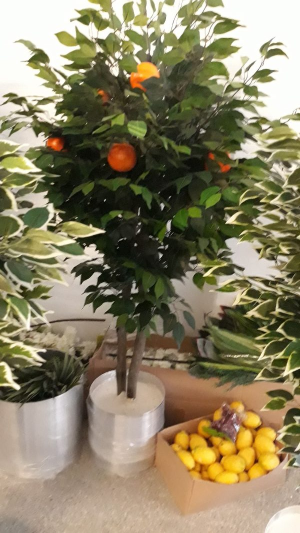 istanbul yapay portakal ağacı